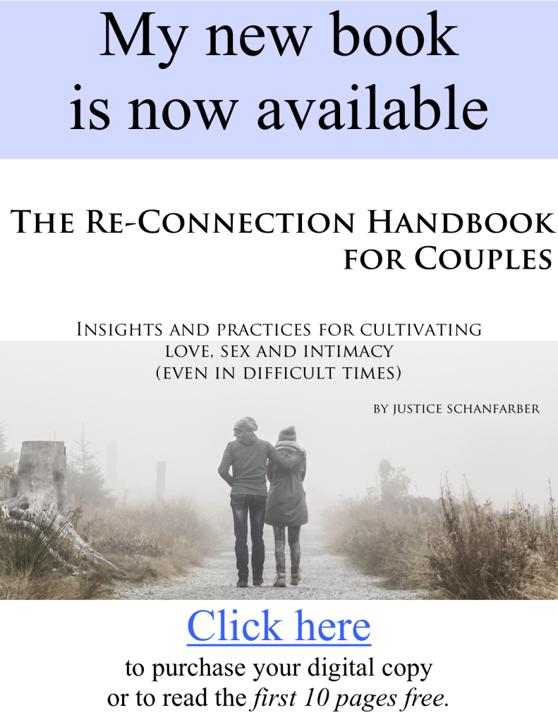 The Re-connection handbook for couples - by Justice Schanfarber - web box2