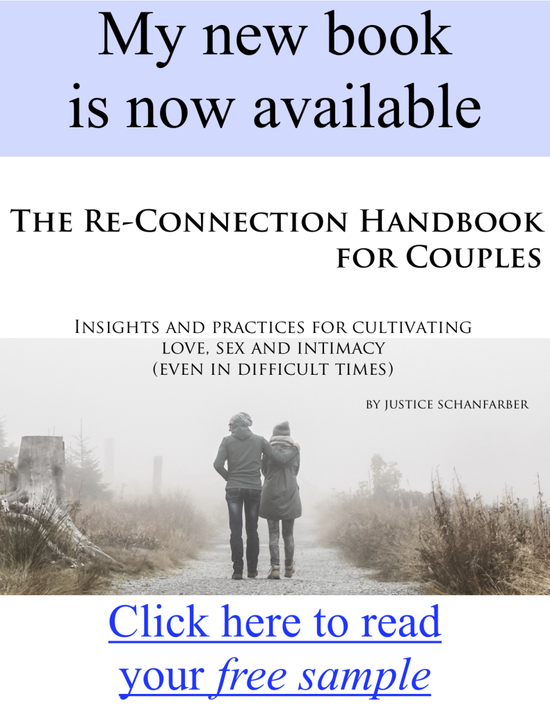 The Re-connection handbook for couples - by Justice Schanfarber - web box3